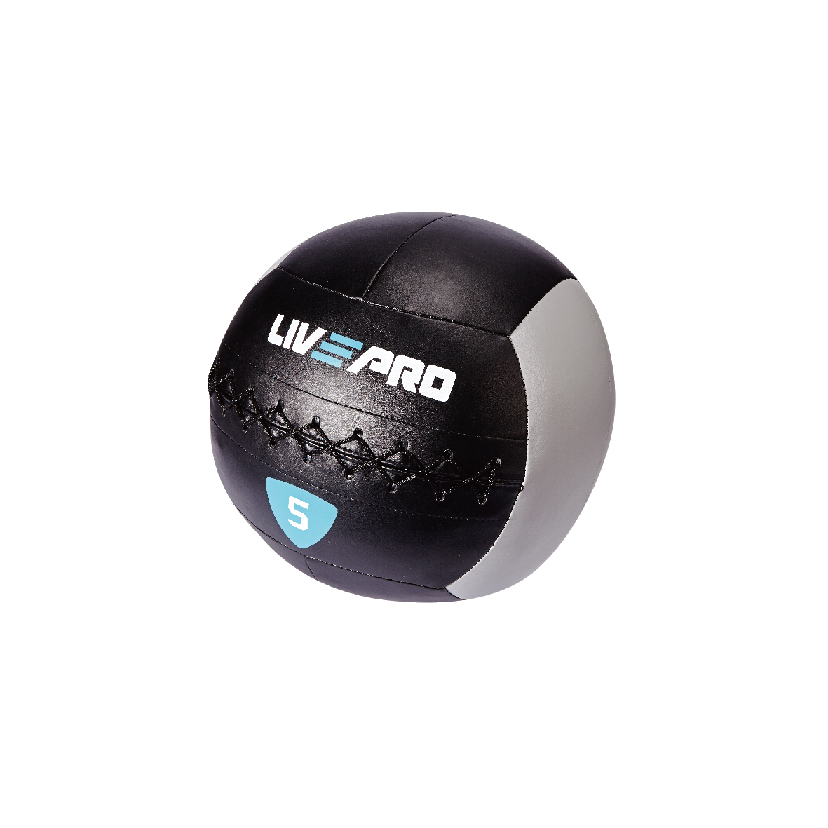 Wall ball-5kg
